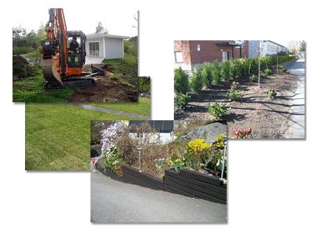 Trädgårdsanläggningar
